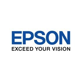 Epson Orange 350ml Ink T596A00